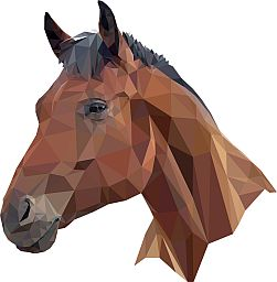 principles of gdpr from the horses mouth